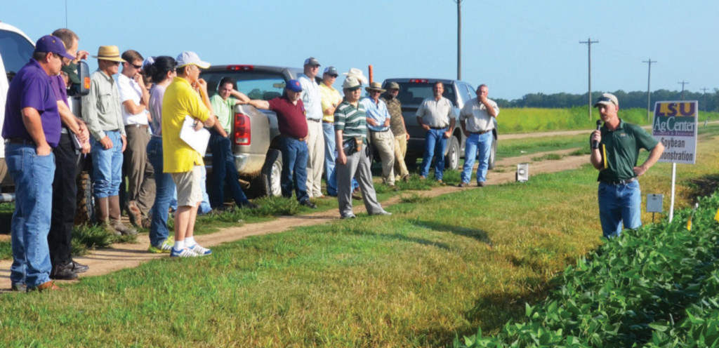 Dr. Trey Price discusses tools for soybean disease management with farmers in St. Landry Parish.