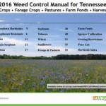UT weed guide
