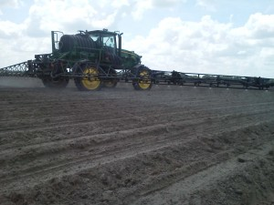 spraying plant beds