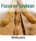 Focus on Soybean logo