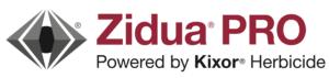 zidua pro logo