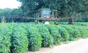 soybean sprayer