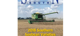 December 2017 Soybean South thumbnail