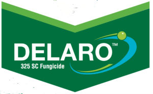 delaro logo