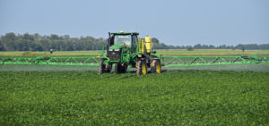 spraying beans arkansas