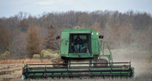 soybean harvest near england, arkansas