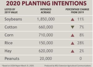 2020 MSU planting intentions