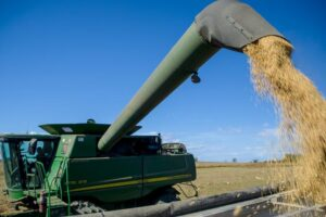 kentucky soybean harvest
