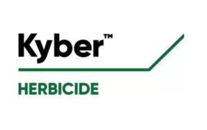 kyber logo