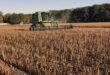 soybean harvest arkansas