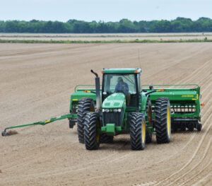louisiana soybean planting