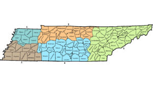 ut top bean contest districts
