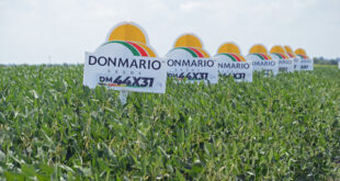 soybean variety signs
