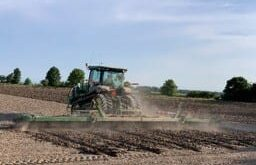 soybean planting